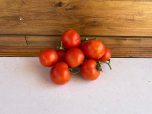 עגבניה אשכול - משק 77