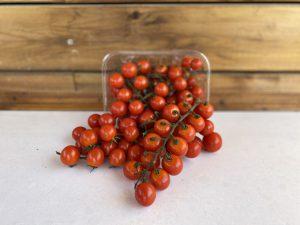 עגבנית שרי אשכול אדום